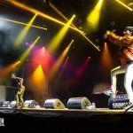 M.I.A. auf dem Splash! Festival 2014 ; Foto: Sven Morgenstern