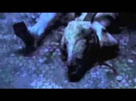 Slipknot Teaser zum neuen Album? Bildquelle: Youtube/Slipknot