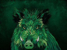 Hurricane und Southside schmücken sich 2015 mit einem Wildschwein als Logo, Quelle: FKP Scorpio